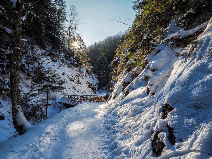 Zakopane - Dolina Białego
