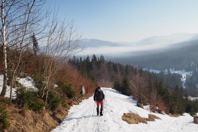 Szlak z Soblówki na Halę Rycerzową ma przyjemne nachylenie.