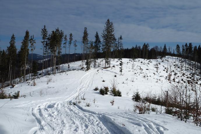 Szlak z Glinki to bardzo widokowy wariant dojścia na Halę Krawculę.