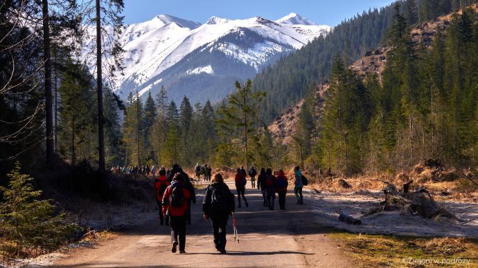 Ruszamy na szlak razem z całą grupą turystów