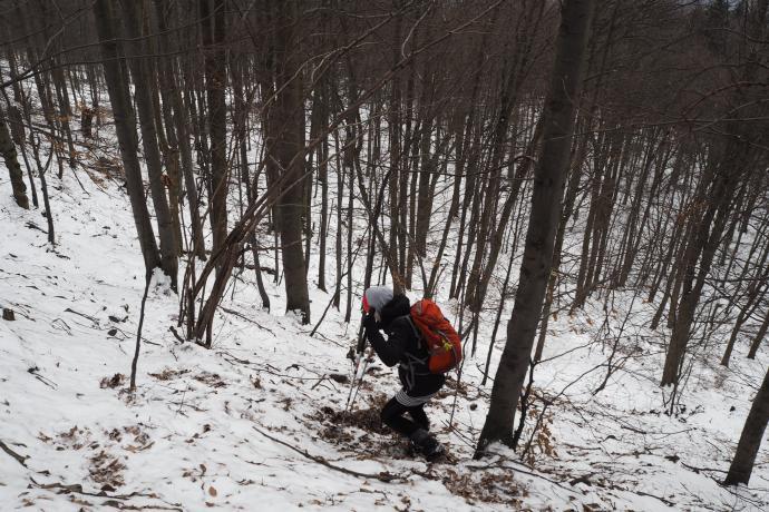 Najstromiej poprowadzony szlak w Beskidzie Niskim