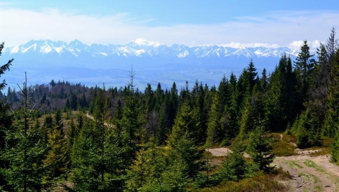 Majestatyczne Tatry widziane nieco powyżej Polany Zielenica