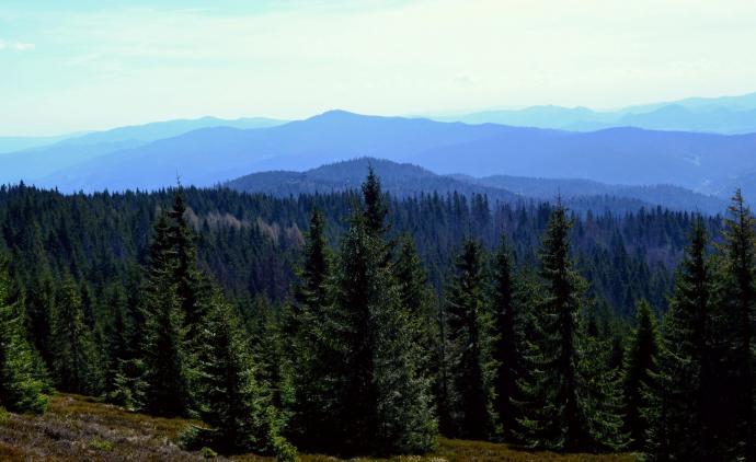 Wieże widokowe na Magurkach i Lubaniu oraz w oddali Pieniny