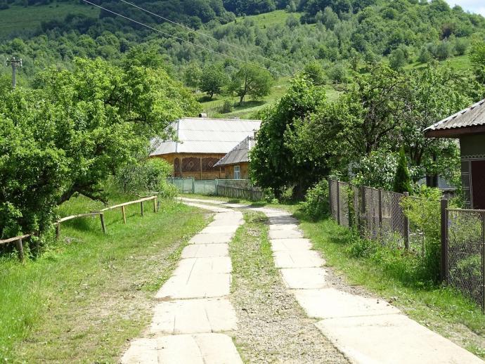 We wsi Lipowiec