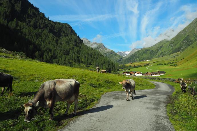Oberiss leży na wysokości 1742 m