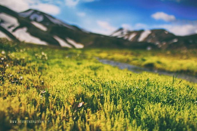 Islandzka dolina