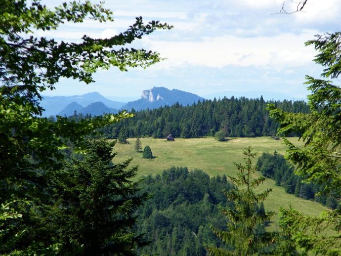 Z okolic Eliaszówki widok w stronę Trzech Koron