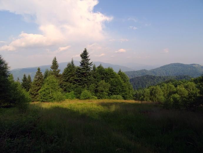 Mniej znana polana w Beskidzie Sądeckim z widokiem na gorczański Lubań