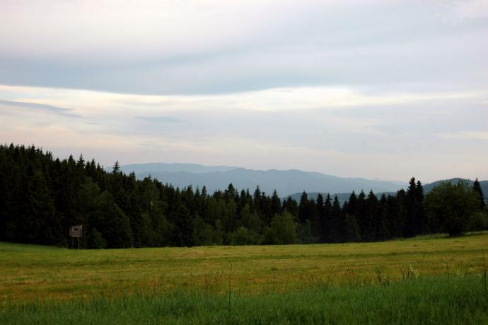 Gorce. Rejon Plebańskiego Wierchu
