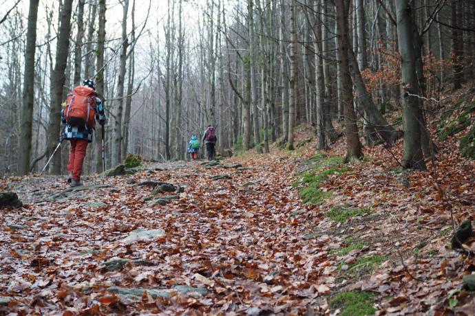 Idziemy zwężającą się doliną Kleśnicy, tzw. Gęsią Gardzielą