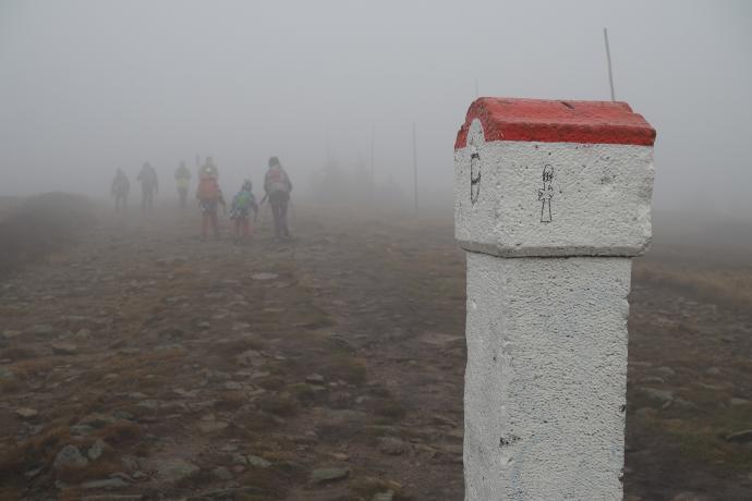 Ostatni odcinek szlaku wiedzie wzdłuż granicy z Czechami