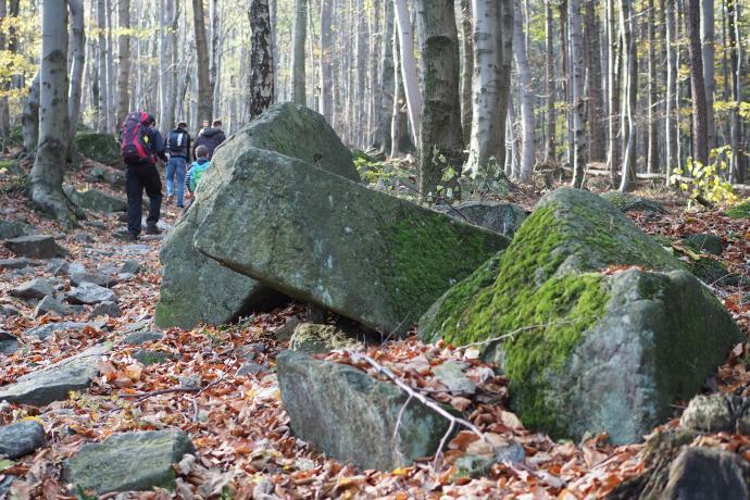Zbocza Ślęży są usiane granitowymi głazami.