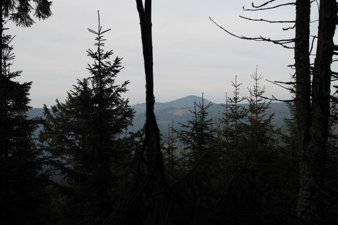 Za drzewami majaczy Czarna Góra