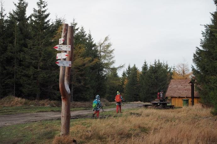 Przełęcz Żmijowa Polana (1049 m n.p.m.)