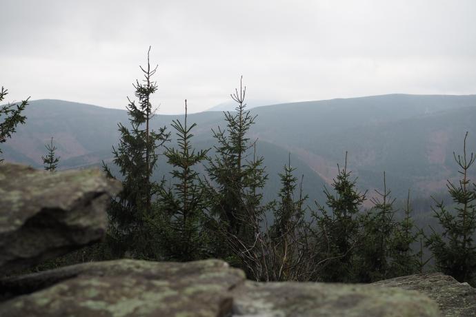 Z wychodni skalnych otwierają się rozległe widoki na  Góry Bialskie