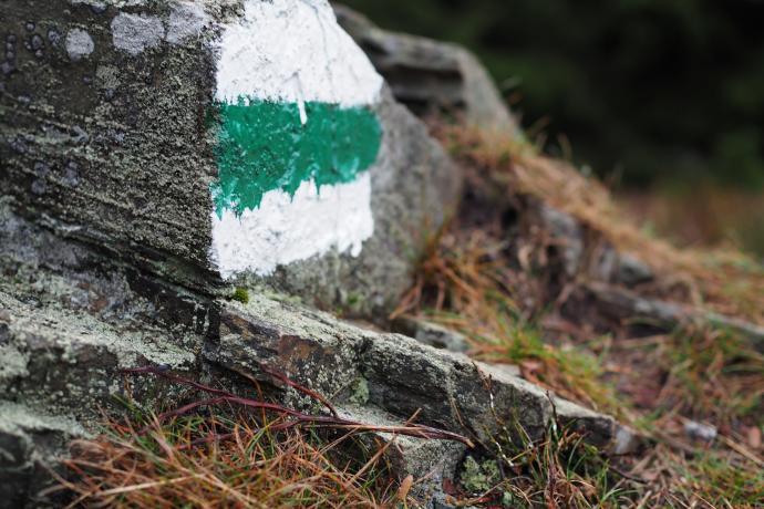 Szlak zielony to łatwiejszy wariant do schodzenia - omija skałki podszczytowe