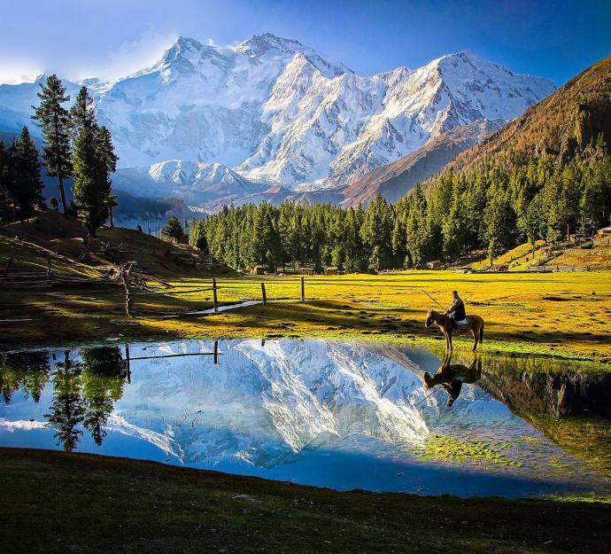 Nanga Parbat widziana z Fairy Meadows