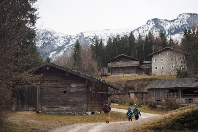 Skansen zajmuje obszar 50 hektarów.