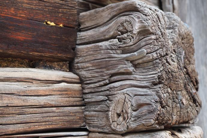 Szczególną uwagę zwracamy na zachwycające stare drewno
