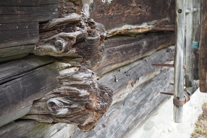 Drewno zachwyca nas niezmiennie.