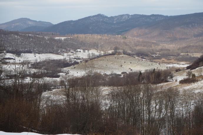 Widok z Rylego na tereny dawnej wsi Krywe. Pośrodku wzgórze z ruinami cerkwi.