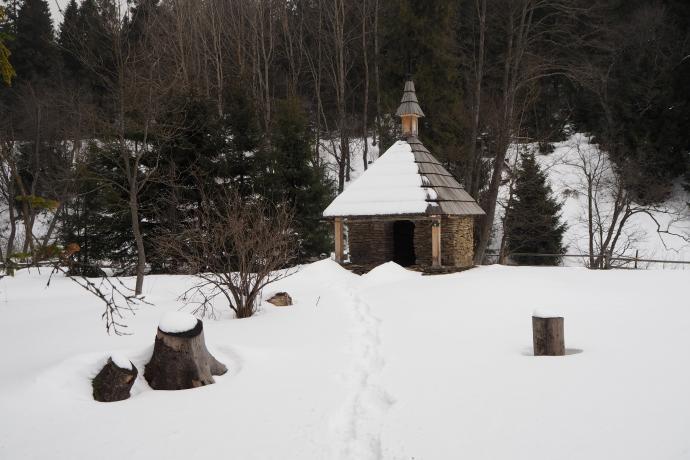 Cel naszego spaceru. Dawny cmentarz w Siankach.