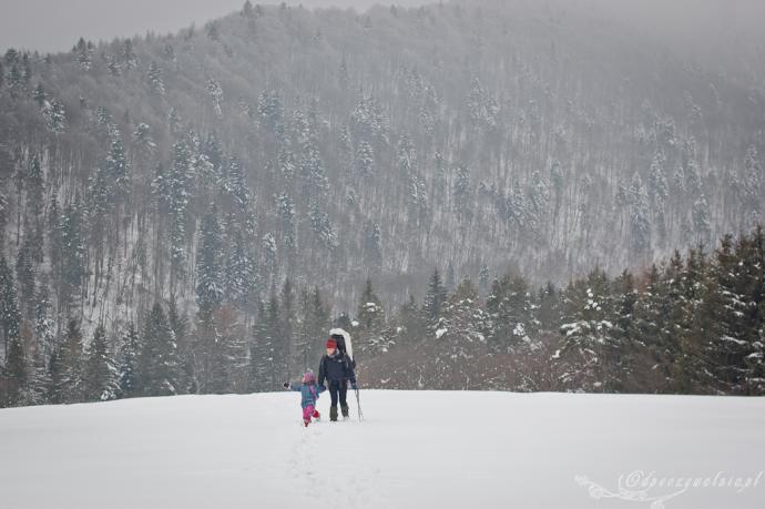 Zimowe Bieszczady
