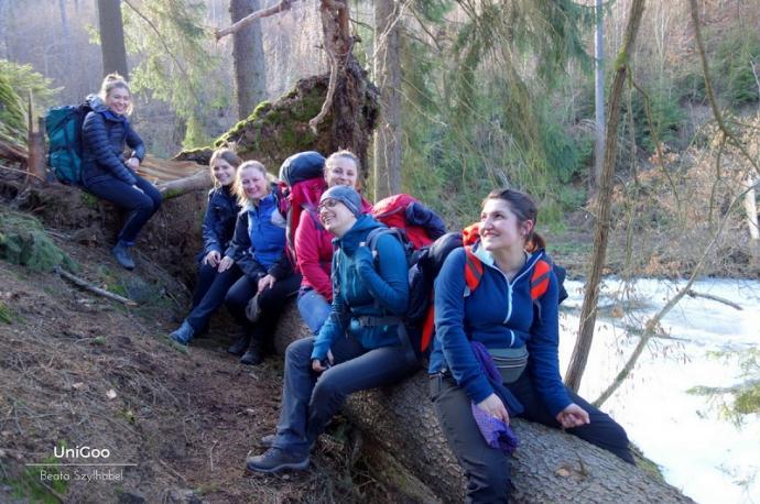 dziewczyny na drzewie 2
