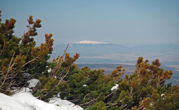 Czy to Fuji? Kilimanjaro?