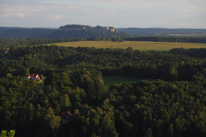 Twierdza Königstein majaczy na horyzoncie.