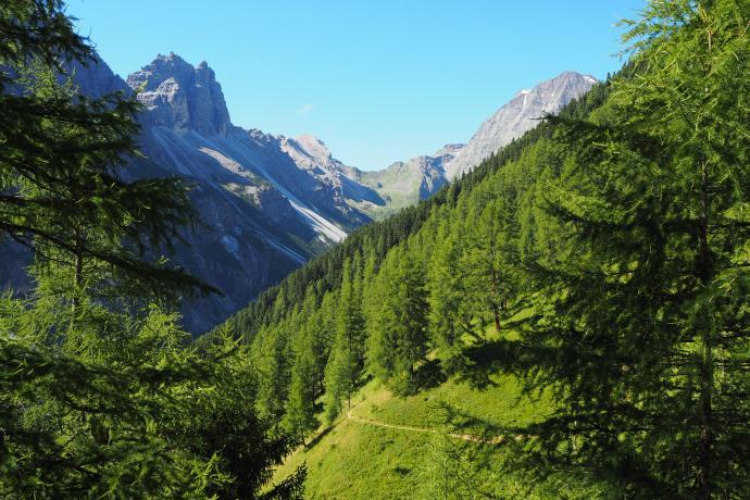 Ścieżka wije się wśród soczystej zieleni w prawdziwie alpejskich widoków.