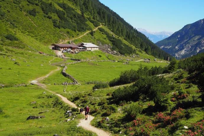 Za schroniskiem ścieżka zaczyna piąć się zakosami na przełęcz.