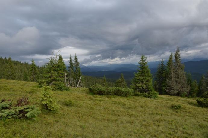 Chmury nad Gorganami