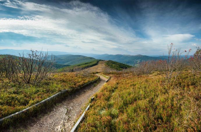 """Droga prowadząca z """"Małej Rawki"""" do Wetliny. Zielony Szlak."""