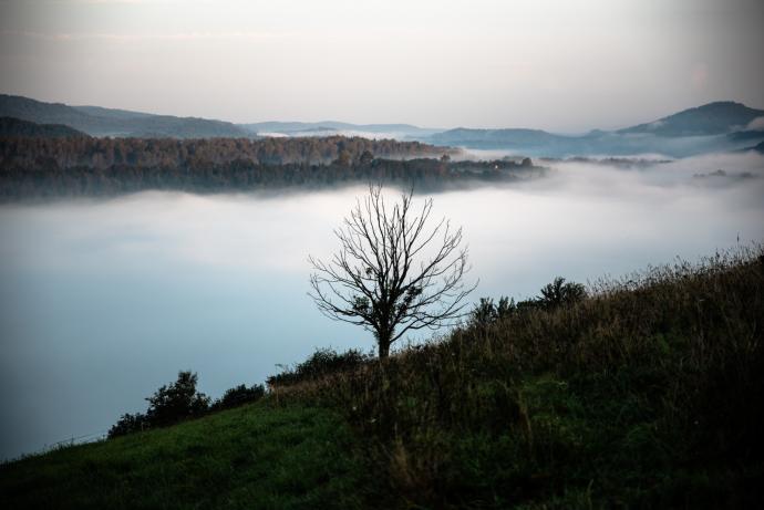 Poranek w Krywe