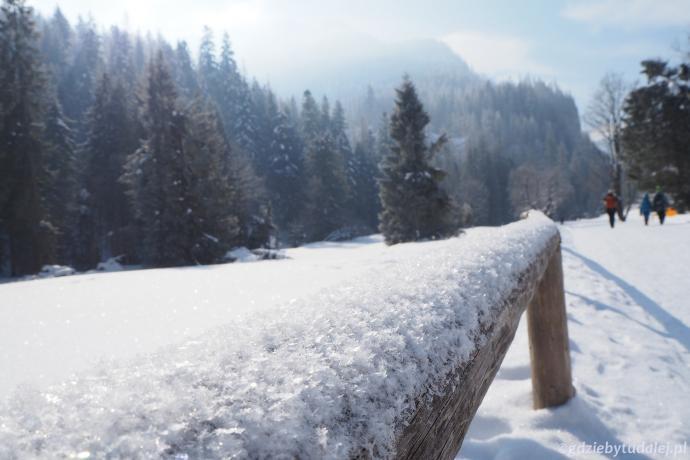 W nocy spadła odrobina świeżego śniegu.