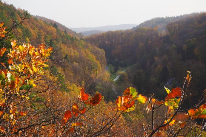 Jesienny pejzaż z Doliną Złotego Potoku w tle.