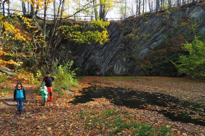 Staw Żabie Oczko to pozostałość dawnego kamieniołomu.