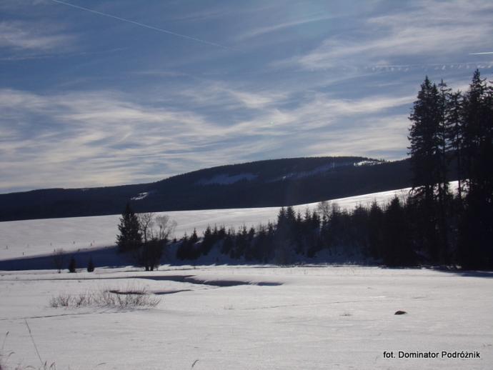 Dolina Dzikiej Orlicy - luty 2019 r.