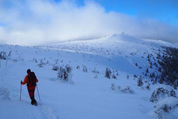 Przed nami Mokra Przełęcz - tu nasz szlak połączy się z czerwonym szlakiem graniowym