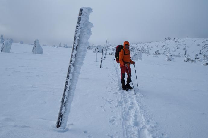 Powyżej górnej granicy lasy szlaki są starannie oznaczone tyczkami.