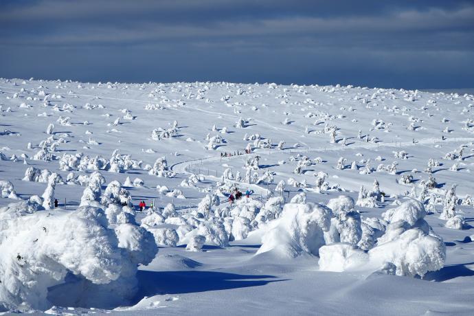 Zaklęci w śnieżne bryły poddani Królowej Śniegu czekają na wiosnę. W oddali szlak na Kopę.