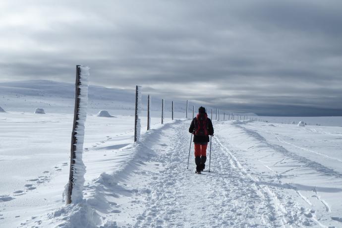 Czerwony grzbietowy szlak tuż przed Spaloną Strażnicą