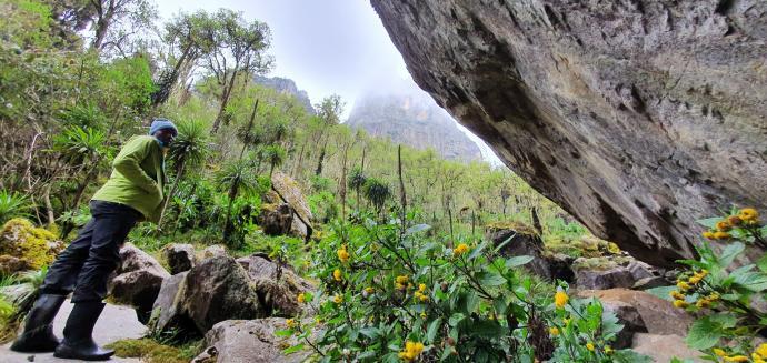Pod skałą Mutinda
