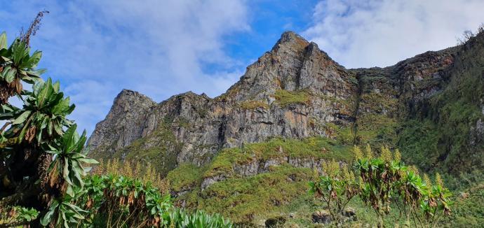 Wzgórza Mutinda