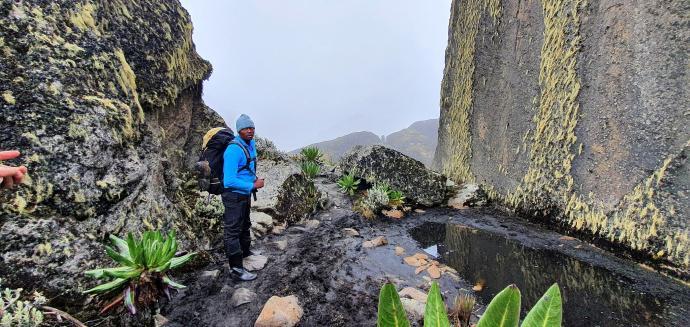 Przed przełęczą Bamwanjarra Pass 4450m n.p.m.