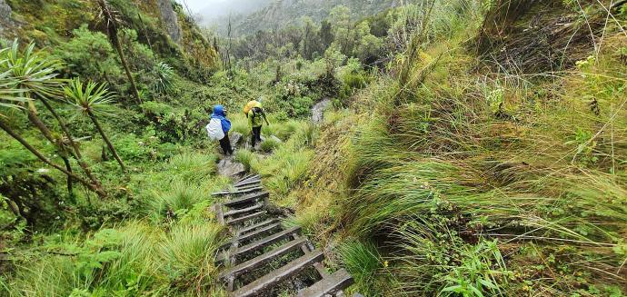 Zejście z przełęczy Bamwanjarra Pass 4450m n.p.m.