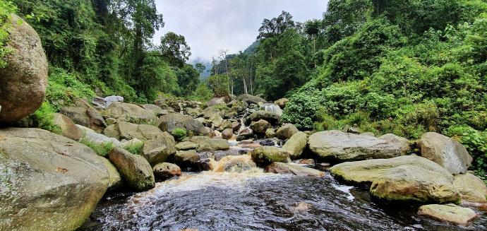 Nad rzeką Nyiariuwarnbo
