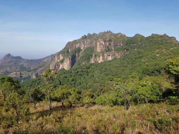 Uganda, góry Kadam
