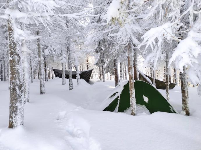 Zimowe biwakowanie w lesie